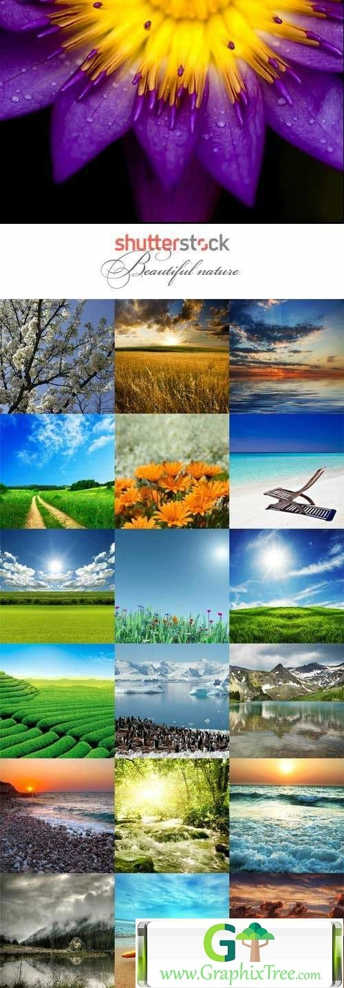 Beautiful nature raster graphics