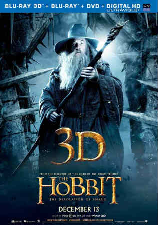 The Hobbit The Desolation Of Smaug 2013 BRRip Hindi Dual Audio Extended 720p Watch Online Full Movie Download bolly4u