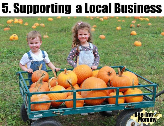 pumpkins, pumpkin patch, fall, fall bucket list, things to do in fall, pumpkin patch vs supermarket, pumpkin patch vs grocer store, family fun, family activity, fall family activity,  life experience, fall fun, fall decor, 5 reasons why, pumpkin pictures, different pumpkins, pumpkin hunting,