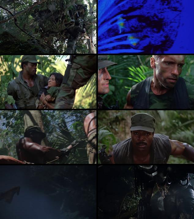 Predator 1987 Dual Audio Hindi 720p BluRay