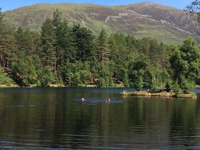 Swimming at Glencoe Lochan