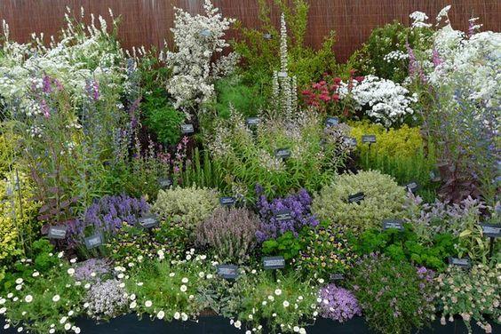 Shelter the herb garden for Help me design my garden