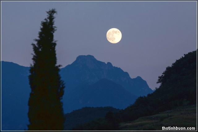 đêm trăng buồn nơi vùng quê