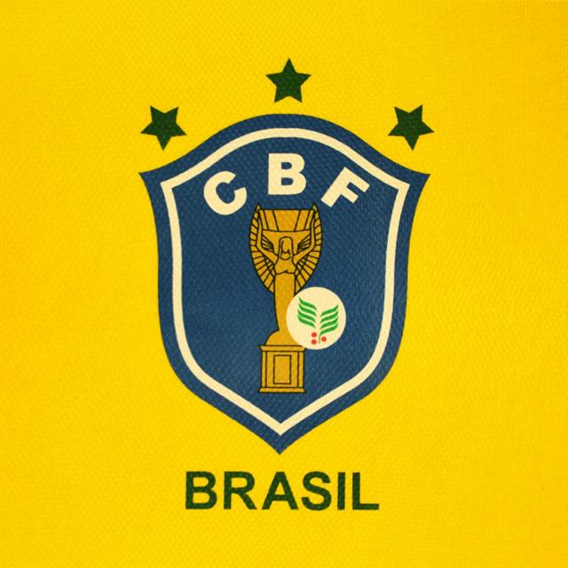 4425e55dd3 O ramo de café no escudo da Seleção Brasileira de futebol - Show de ...