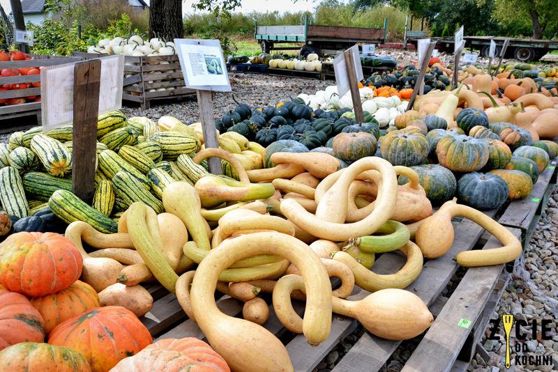 jedynie, food for change, slow food, slow food international, ekologia, lokalny rynek, lokalne produkty, blog, zycie od kuchni