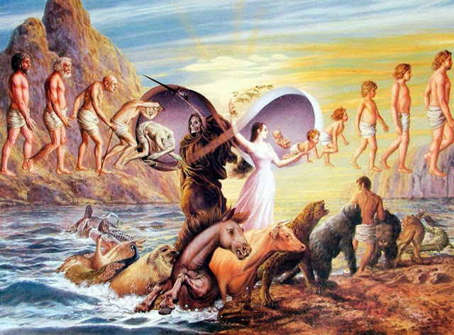 Why Do We Meet The Same Souls In Every Incarnation?