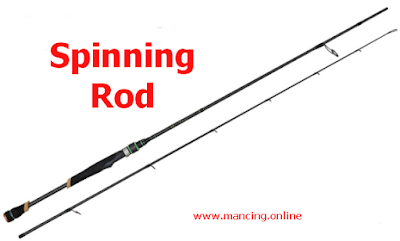 spinning rod joran spinning