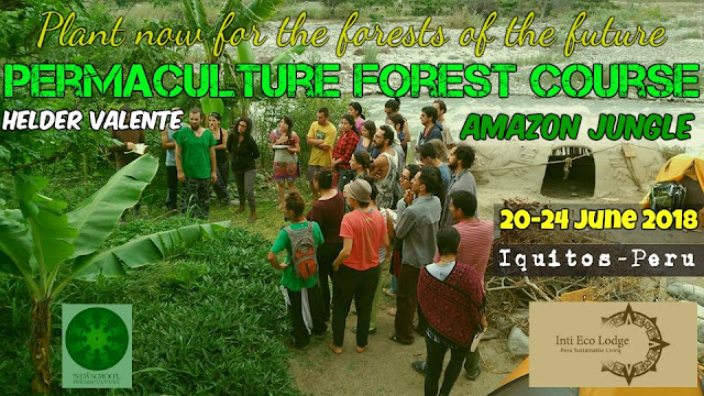 http://sublimart.blogspot.pt/2018/03/permaculture-forest-course-pfc-in.html