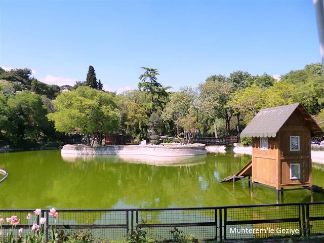 Yıldız parkı havuzu