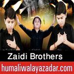 http://www.humaliwalayazadar.com/2016/09/zaidi-brothers-nohay-2017.html