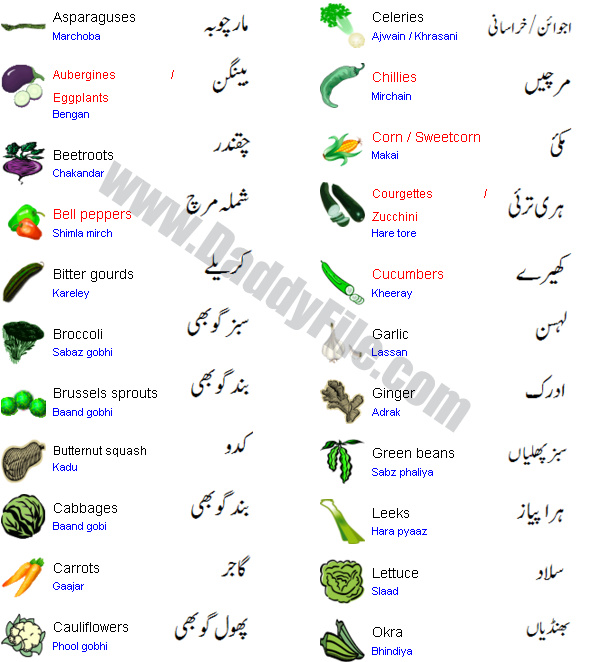 Vegetable names with pictures in urdu to english 2