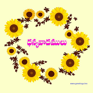 Thanks dhanyavadamulu in Telugu