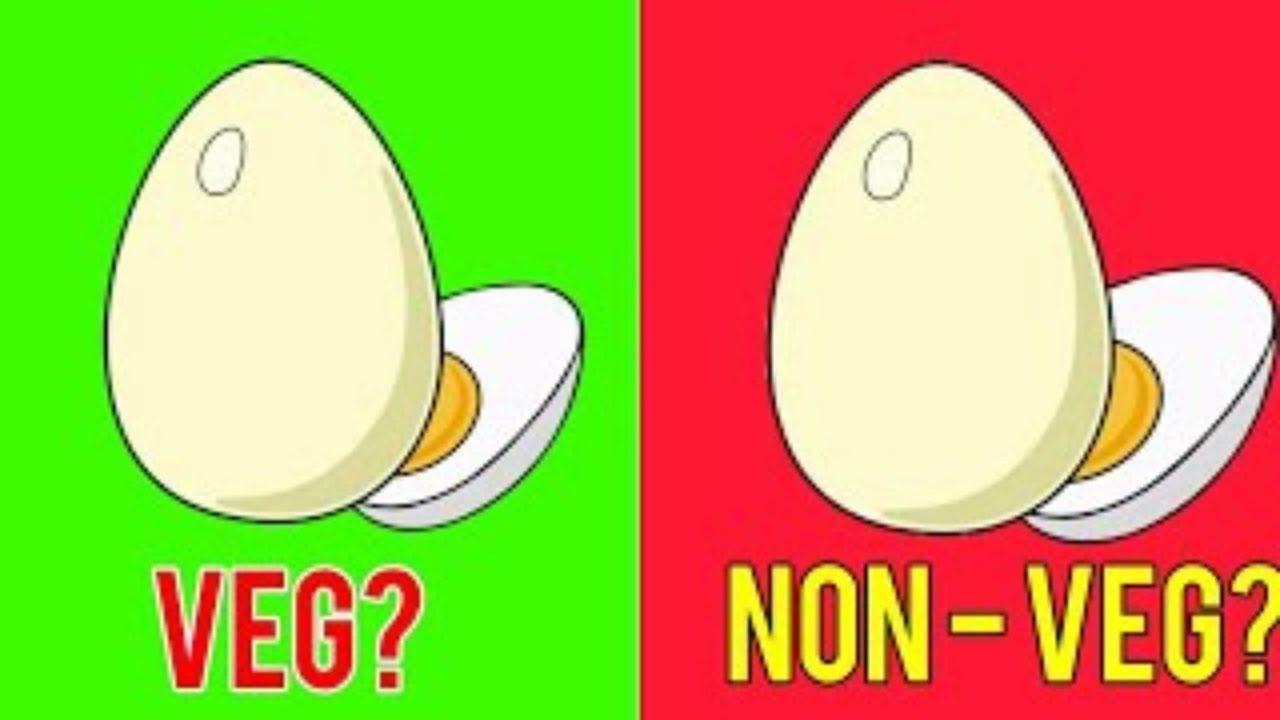 # अंडा शाकाहारी है या मांसाहारी?अंततः वैज्ञानिकों ने इसका जवाब ढूंढ ही लिया