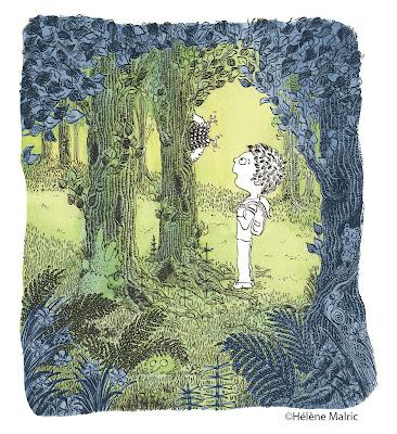 Couronne du rampant, aquarelle, encre, malric, forêt
