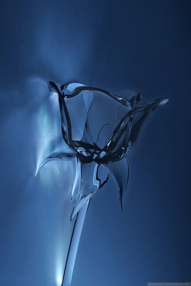 3D iPhone Wallpapers: Glass Rose 3D Concept iPhone wallpaper