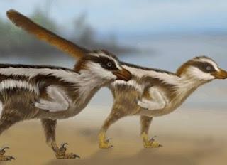 Dinosourus Terkecil Ditemukan, Punya Kaki 1 Sentimeter