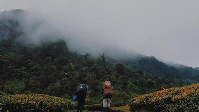 kebun teh gunung kencana