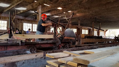 Man in jeans and t-shirt wears safety helmet and eye and ear protection. He is operating a large sawmill used to cut lumber from logs.