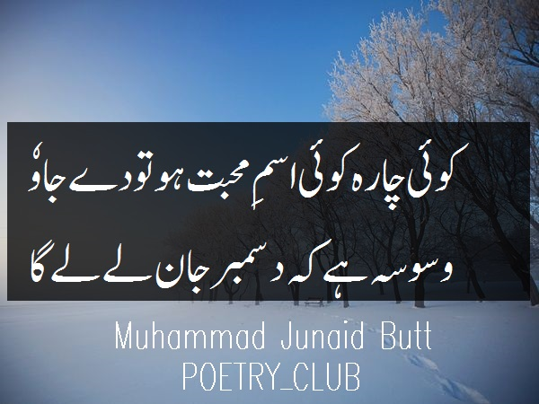 10 Best December Verses | Best of December Poetry - POETRY CLUB