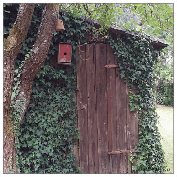 gartenhaus © sylvia • sro 2015