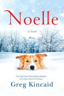 Noelle by Greg Kincaid Book Review