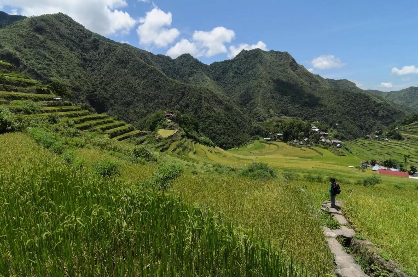 Batad Rice Terraces Under A Hot Miday Sun Ifugao Cordillera Administrative Region Philippines