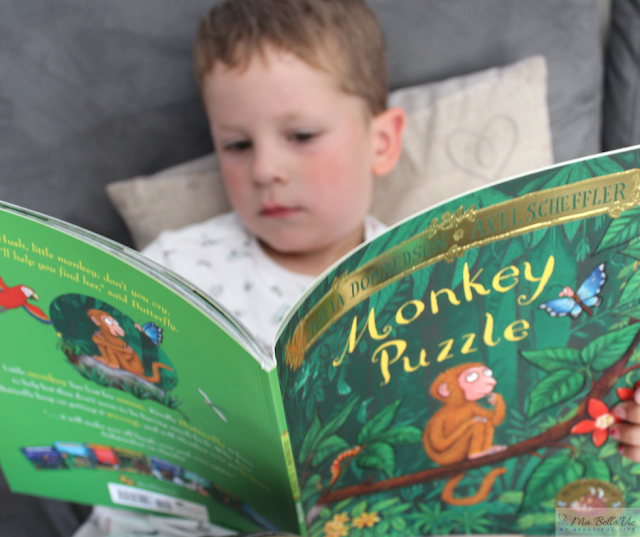 children stories, Julia Donaldson,monkey puzzle, reading