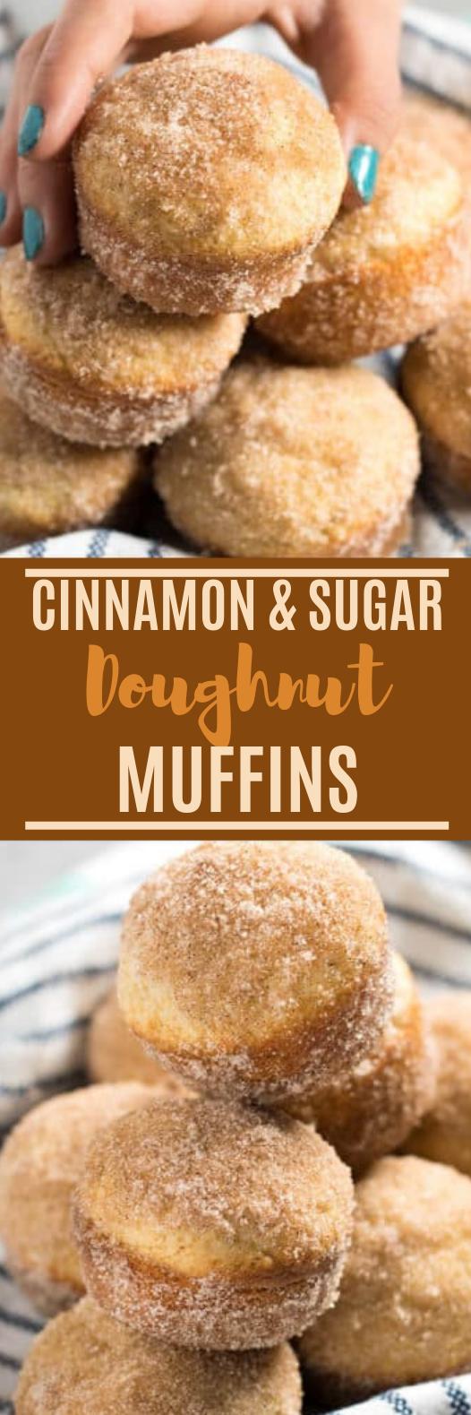 Cinnamon Sugar Donut Muffins #baking #dessert