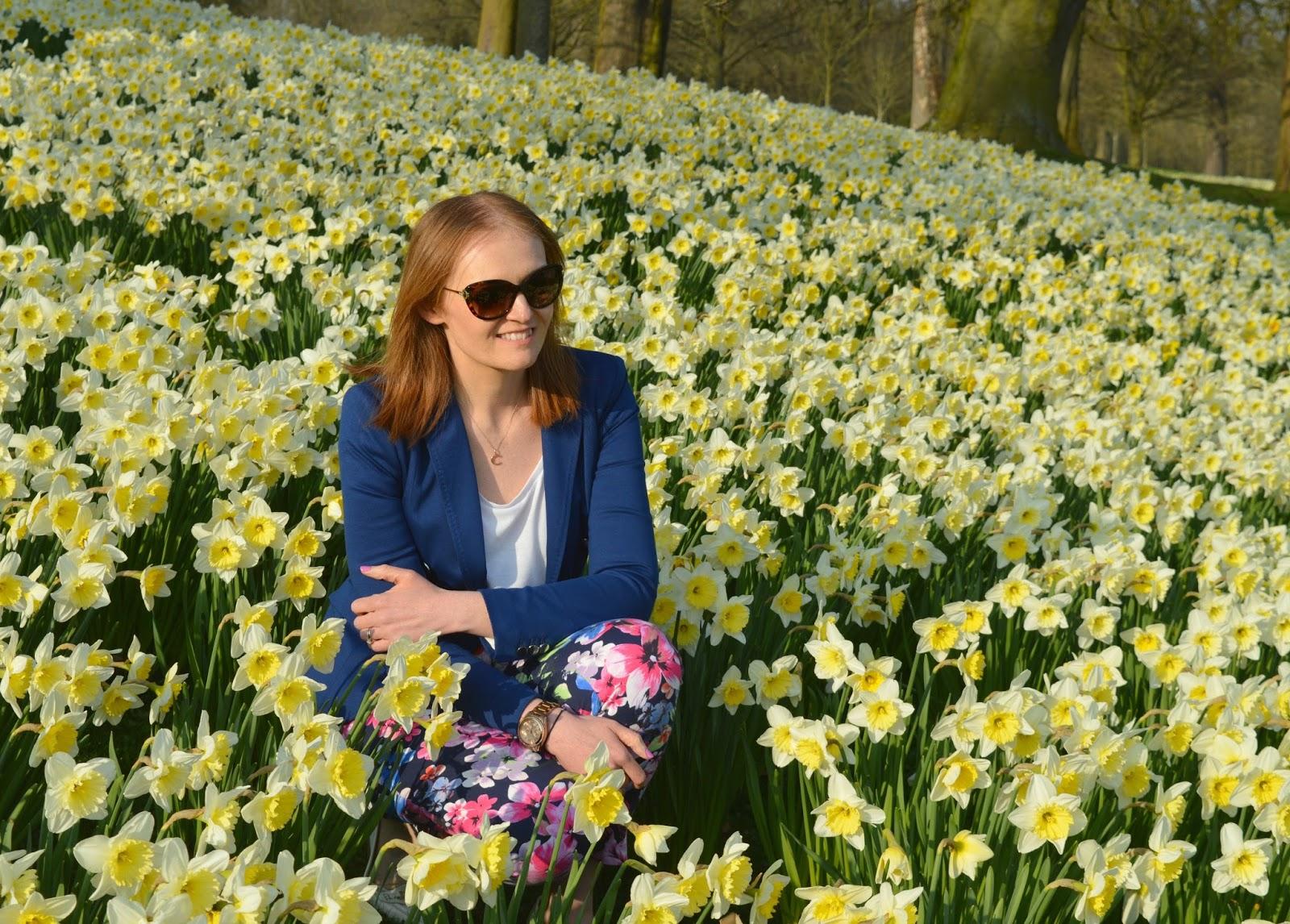 Wynyard Hall Hotel and Spa - Daffodils