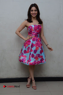 Actress Tamanna Latest Images in Floral Short Dress at Okkadochadu Movie Promotions  0166.JPG