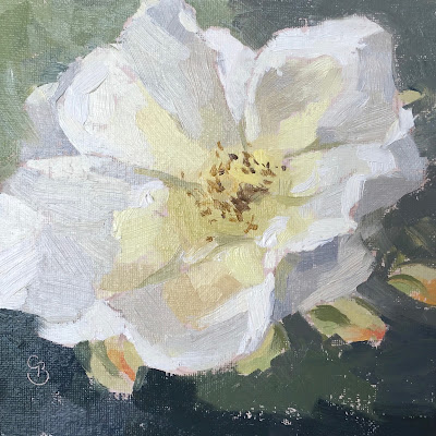 Oil Painting white rose open flower head yellow centre