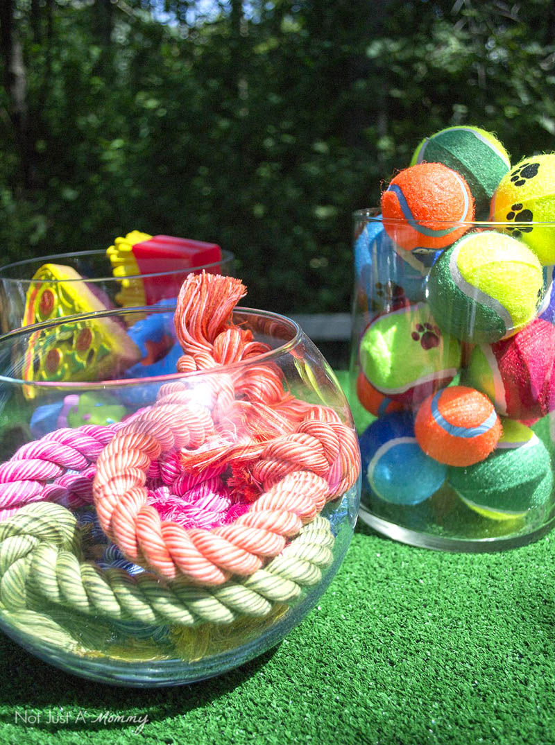 10 Tips For Hosting Your Dog's Barkday Party; doggy toys