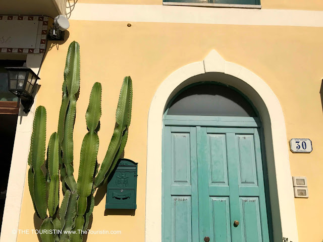 A large cactus and a green mailbox next to the green entrance door of a house with a yellow facade. House number 30.
