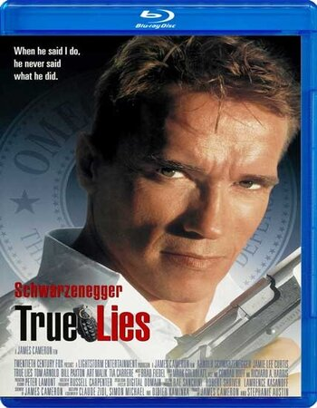 True Lies (1994) Dual Audio Hindi 720p BluRay x264 1.2GB ESubs Movie Download