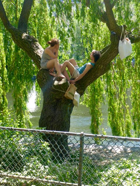 Picknick im Baum