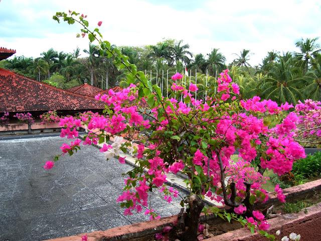 На форто - утро на острове Бали, Индонезия