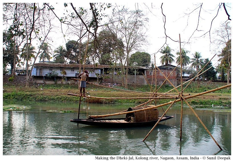 Traditional Dheki jal fishing net in Kolong river, Nagaon, Assam, India - Images by Sunil Deepak
