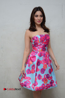 Actress Tamanna Latest Images in Floral Short Dress at Okkadochadu Movie Promotions  0073.JPG
