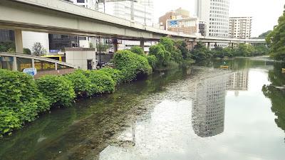 赤坂見附橋から見える高速道と外濠の水中