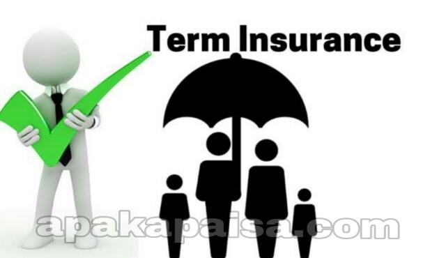 Term Insurance in Hindi - अगर टर्म इंश्योरेंस प्लान खरीद रहे हैं तो इन बातों का रखें ध्यान