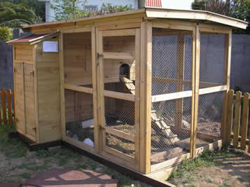 El blog de la elena un blog dulce divertido y entretenido limpieza y desinfeccion del gallinero - Casas para gallinas ...