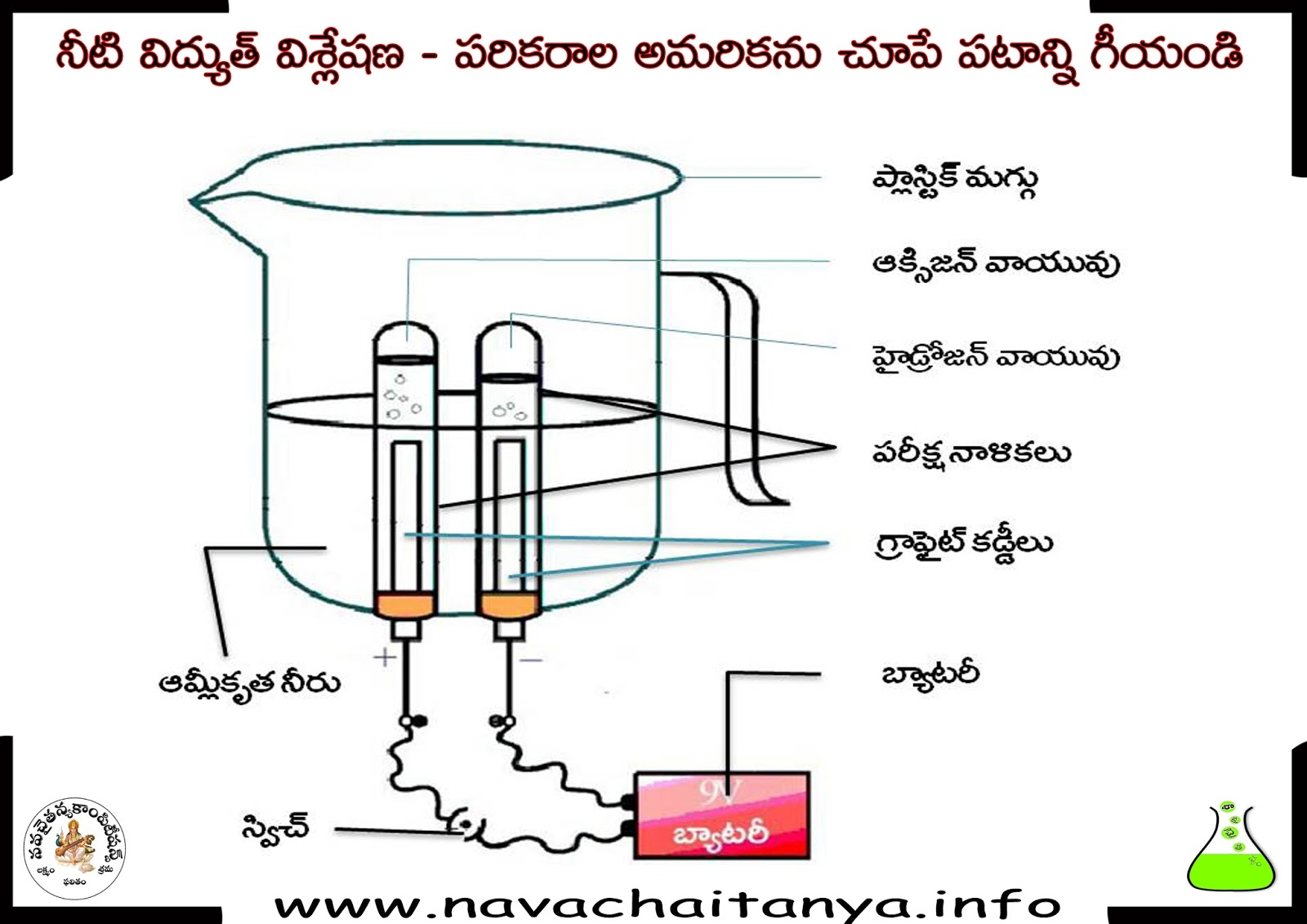 science diagrams for class 8 cats skull bones diagram 10th physical నట వదయదవశలష