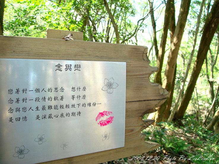 桃園楊梅親子住宿度假|東森山林渡假酒店