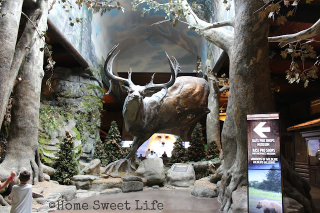 Wonders of Wildlife, Johnny Morris, Wildlife Galleries, Springfield MO, road trip, family trip, Bass Pro Shops, Bronze Buck