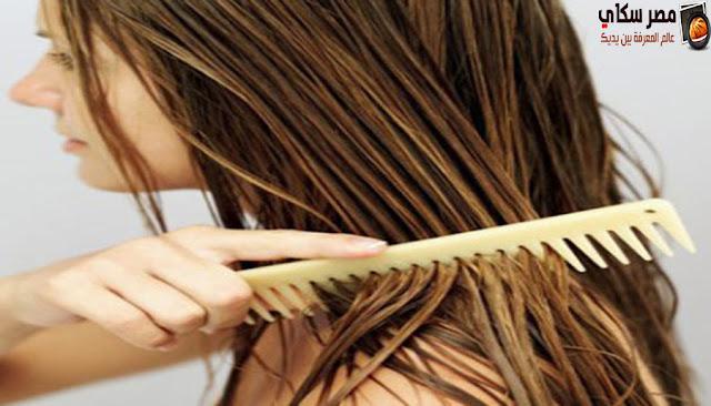 10 طرق للعناية بالشعر الجاف - الدهنى -العادى hair care