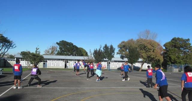 Image result for netball glenbrae school