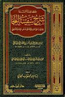 Download Kitab Kasyifatus Saja Syarah Safinatun Naja