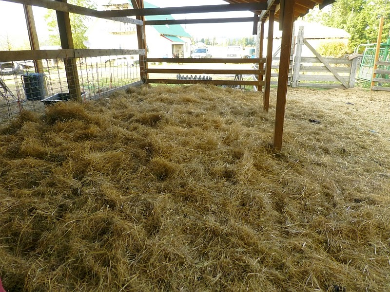 Rural Revolution: Building feed boxes