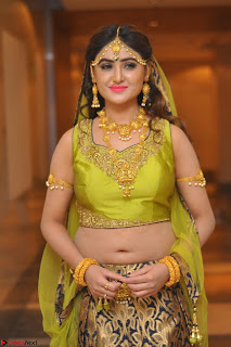 Sony Charishta in Green Choli Ghagra Transparent Chunni Ethnic Wear March 2017 051.JPG