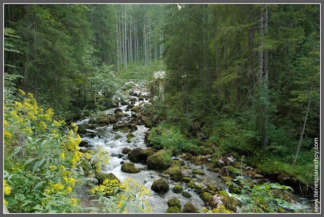 Camino Cascadas de Golling (Golling Wasserfalls Austria)